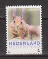 NVPH Nederland Netherlands Pays Bas Niederlande Holanda MNH ; NOW MANY STAMPS OF SQUIRREL Eekhoorn Ecureuil Ardilla - Nager