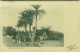 EGYPT - SUEZ - FOUNTAINE DE MOISE - MAILED TO ITALY - 1900s (BG7629) - Suez