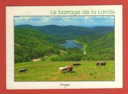 CP 88 VOSGES   247a  Le Barrage De La Lande - Zonder Classificatie