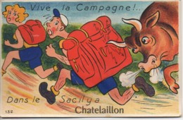 17 CHATELAILLON  Carte Système Gaby N° 132  Vive La Campagne - Châtelaillon-Plage