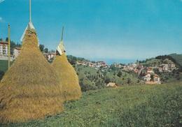 (A54) - FRABOSA SOPRANA (Cuneo) - Panorama - Cuneo