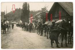 Rumänien Borsa ? - Tragetiere - Sehr Interressant ! Karpaten Koprs ? Soldaten -   Carte Photo Allemande 1914-1918 WWI - Romania