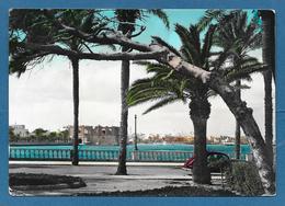 LIBIA LIBYA TRIPOLI LUNGOMARE A. PELT 1957 - Libia