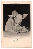COCHON IL Y A CEUX QUI BOIVENT DU CAFE ANIMEE - Cochons