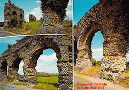 69 - Chaponost - Ruines De L'Aqueduc Romain - Multivues - Frankreich