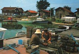 Ostreiculture   Bassin D Arcachon - Pêche