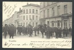 +++ CPA - BRUSSEL - BRUXELLES - Marché Aux Chevaux - Boulevard Du Midi   // - Märkte