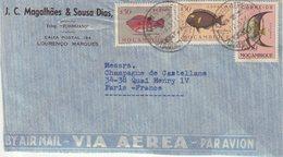 """MOZAMBIQUE : PA . DE """" LOURENCAO MARQUES """"  . POUR LA FRANCE . 1951 . - Mosambik"""