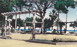 Arzew (Algérie) - Le Square - Algérie