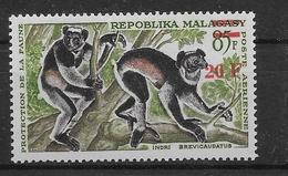 Thème Animaux - Singes - Lémuriens - Madagascar - Neuf ** Sans Charnière - TB - Monkeys