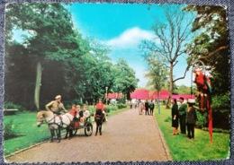 Bettembourg * 1962 Parc Merveilleux - Bettembourg