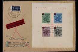 FRENCH ZONE RHEINLAND-PFALZ 1949 (28 May) Express Cover Addressed To Hamburg, Bearing 1949 Red Cross Mini-sheet (Michel  - Germany