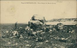 85 BRETIGNOLLES SUR MER / Pierre Rouge Du Marais Girard / - Bretignolles Sur Mer