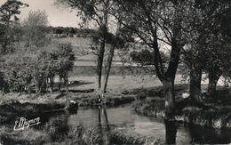 ( CP SM PF 76 )  BLANGY-SUR-BRESLE  /  La Bresle - - Blangy-sur-Bresle