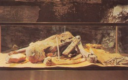 Adena Indian Mummy , Mammoth Cave , Kentucky , 50-60s - Indianer