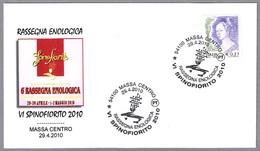 EXPOSICION ENOLOGICA SPINOFIORITO 2010 - Enological Exposition. Vino - Wine. Massa 2010 - Vinos Y Alcoholes