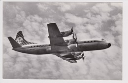 Vintage Rppc KLM K.L.M Royal Dutch Airlines Lockheed Electra L-188 Aircraft - 1919-1938: Fra Le Due Guerre