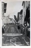 ESPAÑA TENERIFE LA OROTAVA ALFOMBRA DE FLORES CIRCA 1920 POSTCARD - NTVG. - Tenerife