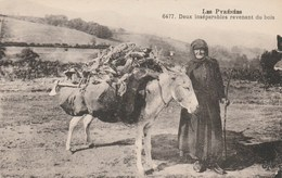 CPA - La Ramasseuse De Bois Mort Avec Son âne - Pyrénées - Paysans