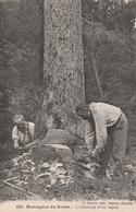 CPA - Bûcherons - L'Abattage D'un Sapin - Montagnes Du Doubs - Paysans