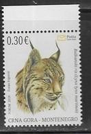 MONTENEGRO, 2019, MNH, ENVIRONMENT PROTECTION, FAUNA, FELINES, BALKAN  LYNX,  1v - Big Cats (cats Of Prey)