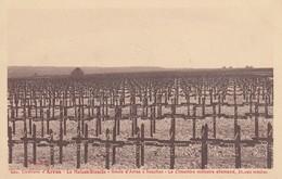 ARRAS (environs): La Maison-Blanche - Route D'Arras à Souchez - Le Cimetière Allemand, 36000 Tombes - War Cemeteries