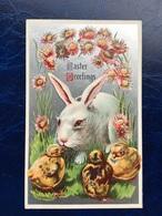 """Embossed-Gaufrée--""""Lapin De Pâques Et Ses Amis Poussins """"--(733) - Easter"""