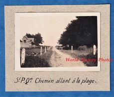 Photo Ancienne Snapshot - SAINT PIERRE QUIBERON - Chemin Allant à La Plage - 1931 - Bretagne Chemin Nature Morbihan - Luoghi