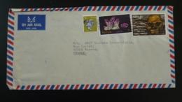Lettre Par Avion Cover Homo Erectus Mineraux Minerals Kenya 1982 - Préhistoire