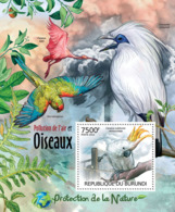 BURUNDI 2012 - Birds & Air Pollution S/S. Official Issues. - Burundi