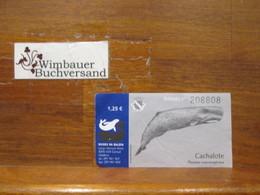 Originaleintrittskarte Museu Da Baleia Madeira - Unclassified