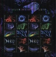 Etats-Unis USA 5084/93 Vie Bioluminescente - Vita Acquatica