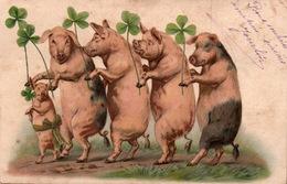 Cochons Humanisés - A La Queue Leu-leu Avec Trèfle à Quatre Feuilles - Carte Dos Simple - Pigs