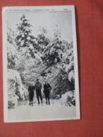 Skiing Near Old Forge  New York > Adirondack   Ref 3888 - Adirondack