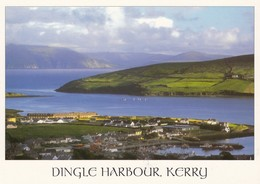 Postcard Dingle Harbour Co Kerry Ireland [ John Hinde ] My Ref  B24065 - Kerry