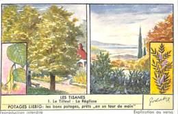 6 Chromos - Liebig - Les Tisanes - Liebig