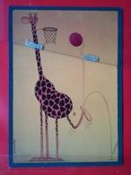 KOV 506-12 - GIRAFFE, GIRAFE, BASKETBALL, COMIC, HUMOUR - Animali