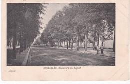 BELGIQUE(BRUXELLES) ARBRE - Belgique