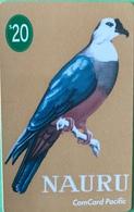 NAURU  -  Card  -  FAKE  -  ComCard Pacific  -  Micronesian Pigeon  -  $20 - Nauru