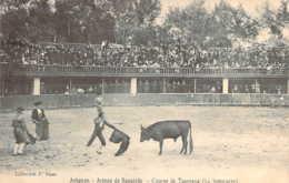 84 VAUCLUSE Simulacre De Corrida Ou Course De Taureaux Aux Arènes De Bagatelle à AVIGNON - Avignon