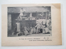 Trieuse De Semences De RIZ à Madagascar -  Coupure De Presse De 1951 - Scienze & Tecnica