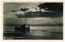 Bredene Aan Zee, Natuurpracht (pk67215) - Bredene