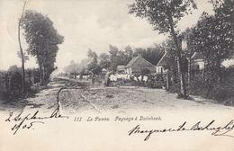 BRABANT, La Côte, Laitières Flamandes (4). Environ 85 C - Belgium