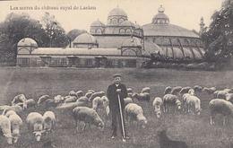 BRUXELLES. Ensemble 169 Cartes Postales, époques Divers - Belgium