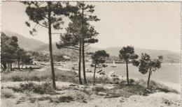 Var :  CAVALAIRE  Sur  Mer : La  Plage   1957 - Cavalaire-sur-Mer