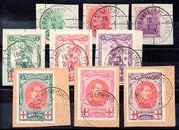 Bélgica Serie Completa Nº Yvert 126/34 O Valor Catálogo 120.0€ OFERTA (OFFER) - 1914-1915 Cruz Roja