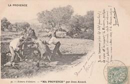 CPA - Les Scieurs D'Oliviers - En Provence 1902 - Paysans