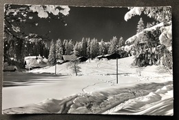 Am Jaunpass/ Winterlandschaft/ Photo Gyger Adelboden - BE Berne