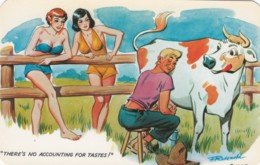 Risque Humour, 'No Accounting For Taste' Man Milks Cow Ignores Beautiful Women, C1950s/60s Vintage Postcard - Humor