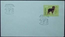 Portugal - Cover 1981 Dog 8$50 Solo Colete Encarnado Campino Horse Vila Franca De Xira - Covers & Documents